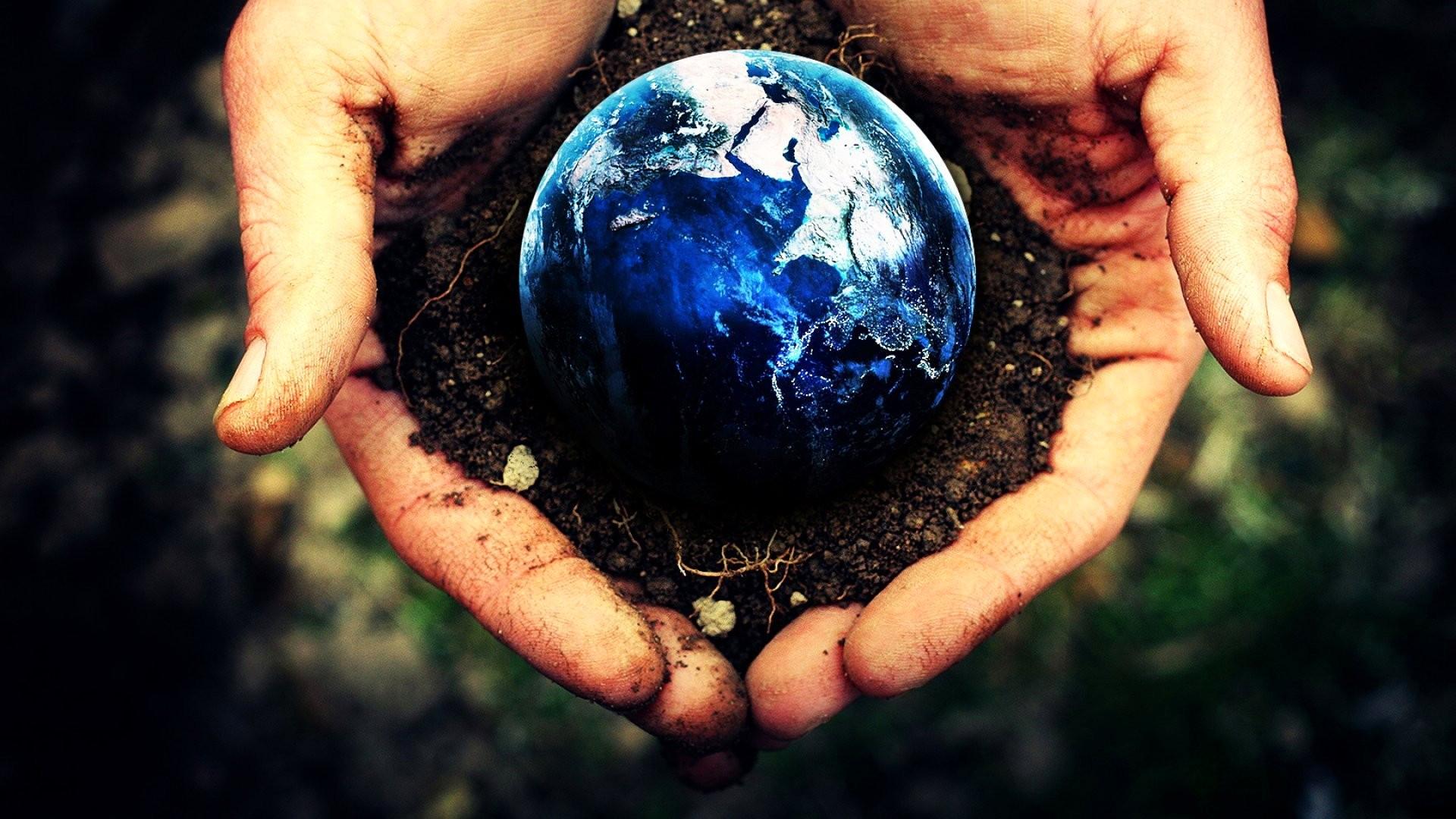 earth-treasure-220764